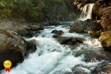 c-Waterfalls_by_Paul_McCartney_Honours